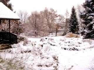 jardinalpin3resize