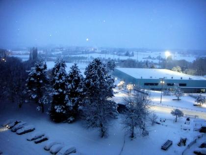 neige2010