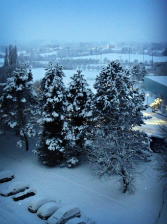 neige2010bis